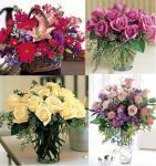 Devansh Flowers & Decors